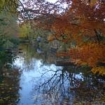 Autumn in Haarzuilens thumbnail