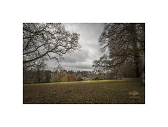 All tucked up for winter (silver/halide) Tags: winter autumn lanhydrock lanhydrockhouse nationaltrust landscape nestled johnbaker trees estate cornwall kernow batis