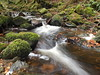 Autumnal Stream. (Flyingpast) Tags: atumn autumn stream creek rocks leaves wet nature trail outdoor walk scotland water moss green waterfall