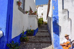 Guitarist in Obidos, Portugal (Marian Pollock) Tags: portugal street architecture stairs cobblestones blueandwhite man guitar playing flowers pots europe obidos