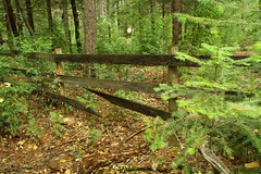 Fence Friday (qorp38) Tags: fence trees forest sharp wooden corral boards broken pointed