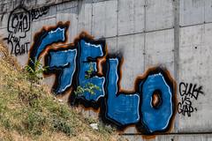 Fenoglio_Massimo_525#3