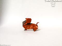 Teckel -Dachshund - Barth Dunkan. (Magic Fingaz) Tags: anjing barthdunkan chien chó dog hond hund köpek origami origamidog perro pies пас пес собака หมา 개 犬 狗