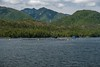 Fish Farming Operation (MIKOFOX ⌘ Thanks 4 Your Faves!) Tags: mountain industry june learnfromexif insidepassage canada northernexpedition fishfarm ferry xt2 mikofox pacific summer britishcolumbia water forest bc fujifilmxt2 cluds marinehighway xf18135mmf3556rlmoiswr