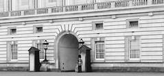 Buckingham Palace (AldoGDiosdado) Tags: london londres aldodiosdado uk buckinghampalace buckingham streetphoto streetphotography europe trip journey travel viaje