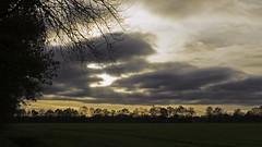 De avond valt (Photographer Simon) Tags: wolken licht kleuren bomen herfst gras takken greppels boerderij geel grijs stilte rust ruimte aalden drente nederland