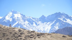 The amazing, and challanging trails of The Yak Attack 2017, one of the world's toughest MTB Stage races in the Planet (Nepal through my Eyes) Tags: mountainbike mountains nepal uppermustang mtb himalayas