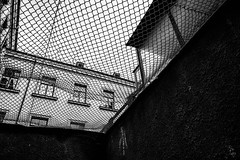 Freedom - I don't want to die in a prison cell, Vilnius, Lithuania (Davide Tarozzi) Tags: freedomidontwanttodieinaprisoncell vilnius lithuania lituania museodelgenocidio kgb genocidemuseum freedom prisoncell torture cell lithuaniangenocide lietuva