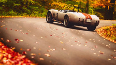Shelby Cobra (at1503) Tags: shelby cobra vintage autumn autumncolours colours redleaves green yellow orange red usa vermont granturismo granturismosport digitalphotography