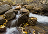 Fall Stream (maberto) Tags: cali california d7200 easternsierras nikon october sierranevada sierras fallcolor landscape leaves mountains trees water ©bradmaberto
