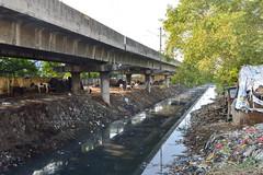 Open sewer (Francisco Anzola) Tags: chennai madras india tamilnadu asia sewer disgusting smelly stink trash pollution tragic animals