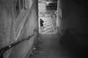 downstairs (gato-gato-gato) Tags: 35mm ch delta3200 iso1000 ilford ls600 nikon noritsu noritsuls600 schweiz strasse street streetphotographer streetphotography streettogs suisse svizzera switzerland zoom300 zueri zuerich zurigo z¸rich analog analogphotography believeinfilm film filmisnotdead filmphotography flickr gatogatogato gatogatogatoch homedeveloped pointandshoot streetphoto streetpic tobiasgaulkech wwwgatogatogatoch zürich black white schwarz weiss bw blanco negro monochrom monochrome blanc noir strase onthestreets mensch person human pedestrian fussgänger fusgänger passant sviss zwitserland isviçre zurich nikonzoom300 autofocus