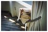 HAL Building, Rotterdam 1991 (jmvanelk) Tags: rotterdam hal kopvanzuid abandoned hotelnewyork urbex nikonfe nikkor24mm curtains torn sunlight window hollandamerikalijn
