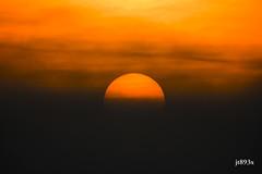 Sunrise and Fog (jt893x) Tags: 150600mm d500 fog jt893x landscape nikon nikond500 sigma sigma150600mmf563dgoshsms sun sunrise alittlebeauty coth thesunshinegroup sunrays5 coth5