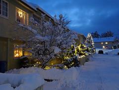 Christmas snow is here. (Mrs.Snowman) Tags: neighbourhood snow westernnorway ålesund