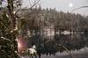 """Reflet d'hiver... ( P-A) Tags: arbres calme conifières douceur froid gel glace hiver montagnes neige paisible reflect saison photos simpa© wakefield rivièredelagatineau """"nikonflickraward"""" """"a través de tu mirada"""""""