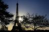 Paris (FRANCOIS VEQUAUD) Tags: paris hiver toureiffel soleil lueurs silhouette