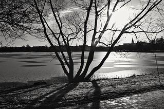 Backlight, Hudiksvall