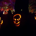The Great Jack-O-Lantern Blaze thumbnail