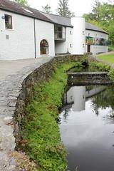 IMG_3113 (avsfan1321) Tags: connemaranationalpark connemara nationalpark ireland countygalway green lush landscape plants water