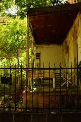 Symbiosis - Simbiosis (Andrés Luis Muñoz) Tags: oldhouse casa abandonada nikond5300 afsnikkor35mm18 abandoned nikon outdoor exterior naturallight warm calido cordoba argentina latinamerica latinoamerica