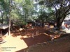 DSCN2419 (Prof.Suresh G. Isave) Tags: forts near pune mahabaleshwar points smadhi afzalakhan shivaji maharaj poladpur ghat satara oneday treks family mumbai shivajimaharaj simple mtdc