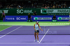 20171025-0I7A2013 (siddharthx) Tags: singapore sg simonahalep carolinegarcia elinasvitolina wtasingapore tennis womenstennis singaporeindoorstadium power grace elegance contest competition 1seed 4seed 6seed 8seed champions rally volley serve powerfulserves focus emotions sports wtatour porscheservesspeed bnpparibas stadium sport people wta winner sign crowd carolinewozniacki portrait actionshots frozenintime