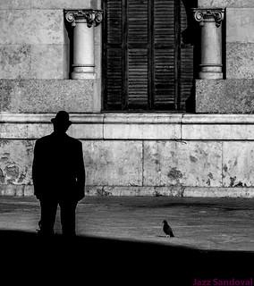 Hombre con sombrero y paloma. Valencia, noviembre 2017.