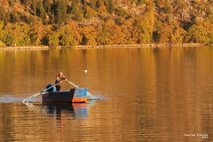 Late in the afternoon, rowing in the lake of Kastoria. (Κώστας Καϊσίδης) Tags: lakekastoria lakeorestiada kastoria greece hellas outdoor nature boat afternoon rowing trees forest