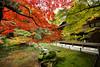 京都-南禅寺 (Emy Lam) Tags: eikando kyoto japan 京都 永観堂 南禅寺 nanzenji