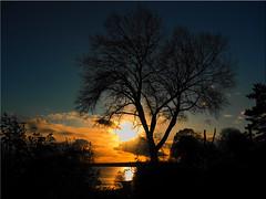 A November day at the Baltic Sea (Ostseetroll) Tags: deu deutschland geo:lat=5406567207 geo:lon=1077370405 geotagged ostseeküste schleswigholstein sierksdorf balticsea lübecktravemünde