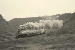 Black 5 goods (feroequineologist) Tags: black5 lms 44806 nymr northyorkshiremoorsrailway railway train steam