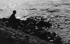 Fischer am Rhein flussabwärts von Düsseldorf 1966 (Robertinsco) Tags: düsseldorf river rhine fischer angler roach rutilus zeiss super ikonta 53316 f28 tessar
