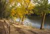 Parque en otoño (Clotario de la Cruz) Tags: arroyo montes montestorozos pueblo pueblos torozos