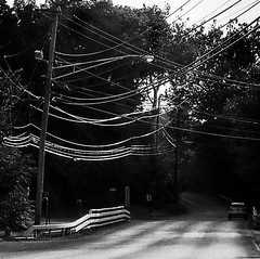 Small Town Wires (Demmer S) Tags: street streetphotography car telephonewires wires voltage electricity pole power telephonelines cables powerline powerlines road streetlight telephonewire cable telephonepole lights lines tree automobile shootthestreet streetshots documentary country rural village town guardrail outside nature light trees streetscene outdoors utilitypole grain throughglass shootingthroughglass shotthroughglass throughawindow fromthecar ontheroad whiledriving throughwindow bw monochrome blackwhite blackandwhite blackwhitephotos blackwhitephoto
