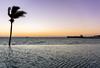 Costabaja Resort (jennchanphotography) Tags: jennchanphotography travel tourism mexico lapaz presstrip media nature waters beach costabaja resorthotel resort hotel sunset beachclub