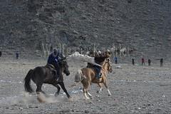 30101803 (wolfgangkaehler) Tags: 2017 asia asian centralasia mongolia mongolian westernmongolia ulgii ölgii bayanulgiiprovince altaimountains altaymountains altaymts goldeneaglefestival people person kazakh competing competition competitor game games horse horseriding horseback horsebackriding horsebackrider traditionalgame kukhbar fighting goatskin kokpar