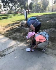 017 Lost Already (saschmitz_earthlink_net) Tags: 2017 california longbeach eldorado orienteering laoc losangelesorienteeringclub losangeles losangelescounty eldoradoeastregionalpark park parks