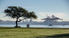 Walk in the Park (Sworldguy) Tags: vancouver seawall stanleypark tree harbour gantry boats seaplane autumn fog grass water waterfront shipyard cityscape nikon d7000 dslr sky park bench canada britishcolumbia bc outdoor people walking
