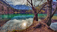 The old tree of the lake. (valpil58) Tags: fusine lake landscape hdr nikond600 afsnikkor1424mmf28ged friuli