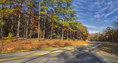 Pine Mountain Panoramic #4 (Thomas Vasas Photography) Tags: travel landscapes panoramics scenics scenicroadways mountainroads roads trees grass fall seaons stateparks sky clouds fdrstatepark pinemountain georgia