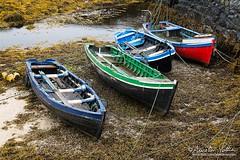 Ballynahown, Les barques (Aurelien Pottier) Tags: barque smallboat fishingboat havre haven harbor port cordages ropes algues algae ballynahown cogalway countygalway baiedegalway galwaybay irlande ireland europe westerneurope europedelouest républiquedirlande republicofireland ie