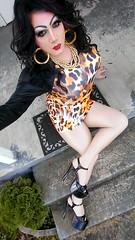Meow... (therealdavinawayne74) Tags: drag dragqueen dragmakeup tgirl tranny crossdresser crossdressed crossdressing transvestite hosiery highheels pantyhose tights heels nylons minidress m2f