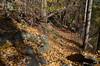 095 Huylers Landing Trail (Felton Davis) Tags: palisades njpalisades huylerslandingtrail thelongpath georgewashingtonbridge