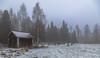 Marraskuu, November (pohjoma) Tags: aitta fall autumn november canoneos5dmarkiv finland canonef24105mmf4lisusm oldgranary granary syksy marraskuu kaamos usva sumu mist fog