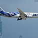 All Nippon Airways Boeing 787-8 Dreamliner   JA802A