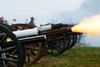 Passchendaele Salute 2017_11_10_IMG_9624 (bypapah) Tags: papah fort france nord seclin 2017 commemoration militaire military reconstituionhistorique historicalreenactment anniversaire