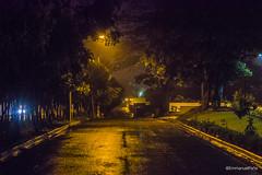 _DSC0067 (EmmanuelPeña75RD) Tags: ilce ilce6500 sonya6500 mirrorless emount night nightshot