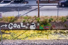 cashed bouffant (bhautik_joshi) Tags: street streetart graffiti wheatpaste sanmateo sfist sf sanfrancisco california bayarea bhautikjoshi unitedstates us