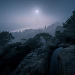 Moonlight Shadow thumbnail